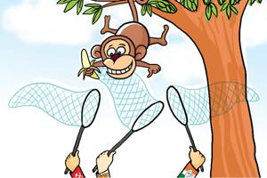 As per a report by the agriculture department, the marauding monkeys and birds cause a loss of Rs 150.10 crore annually to different horticultural crops.