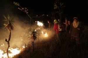 Hundreds of volunteers help control wildfire in Brazil
