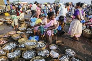 A vendor sits waiting for customers at the Margoa wholesale fish market in Goa.