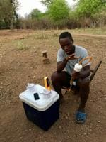Joba Edward is one of the volunteer human mosquito traps. As part of a Zambia health ministry study, he is paid to sit outdoors from 6 pm to 6 am in shorts and a T-shirt, to catch live mosquitoes as they bite him, using a mouth aspirator. Each volunteer is given a dose of deltaprim to prevent malarial infection.