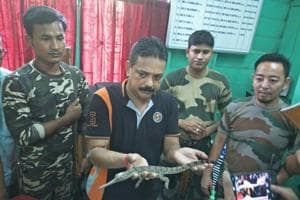 Ranger Sanjay Dutta (in black T-shirt) holding  a baby crocodile seized from wildlife smugglers.