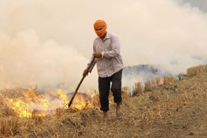 Efforts of the state government to check stubble burning have not been received well by the farmers. They are demanding an aid of  Rs 300 per quintal or Rs 6,000 per acre to manage the paddy stubble.