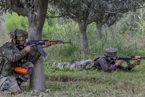 Around 170 militants including top commanders killed in Kashmir this...
