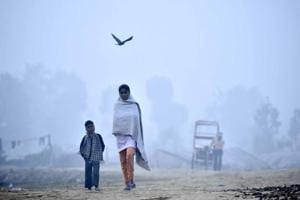 Photos: The fight to survive air pollution in Delhi is on