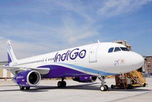 Close shave for 159 IndiGo passengers as wild boar strays onto...