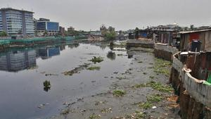 Mithi among three most polluted rivers in Maharashtra
