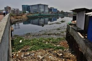 Pollution in three Maharashtra rivers nine times permissible limits