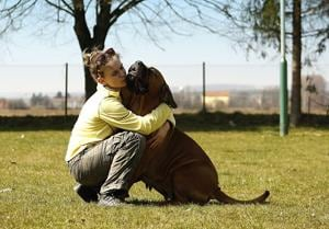 Pet owners have higher self-esteem, are more physically fit, conscientious and extroverted, and less lonely, fearful or preoccupied, says the American Psychological Association.