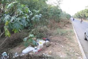 Dragged into bushes and gangraped around 8pm, the victim was found sobbing on the roadside at 9m.