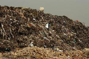 EDMC to take IIT-Delhi's help to stabilise Ghazipur landfill