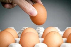 Rs 5 to Rs 7 a piece: Egg prices up, likely to go up further