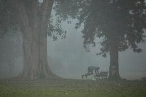 A man exercises at a park on a morning in New Delhi.