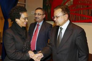How India's 3-way plan led to Dalveer Bhandari's win at the ICJ