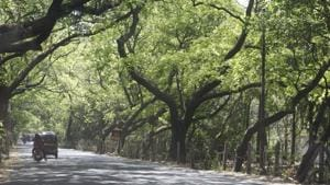 After Metro, motor vehicle department wants Mumbai's Aarey Colony land...