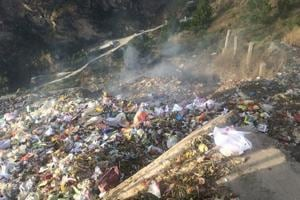Forest dept to help ITBP, Army manage waste on border
