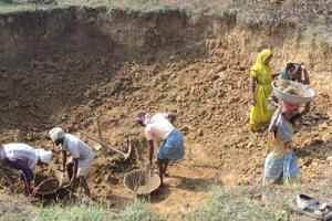 An indication of the widening gap in NREGA implementation in Rajasthan is that average number of days of employment provided to each household has fallen to 39 from 56 in 2016-17 and 55 in 2015-16.