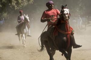 Photos: Highlights from Bihar's colourful Sonepur Mela