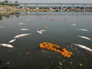 Waste generated from ritualistic practices is dumped into the Yamuna river in Delhi.