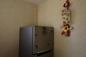 Woman forced to keep dead baby in fridge as she kept waiting for death...