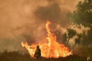 439 buildings burned in wildfire northeast of Los Angeles