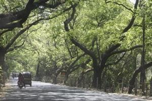Maha govt allots 3-acre plot to Andheri RTO for brake tests