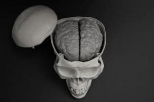 It's all in the head: Brain injury can lead to gut dysfunction, blood...