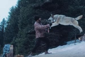 Tiger Zinda Hai but these wolves won't be when Salman Khan fights them...