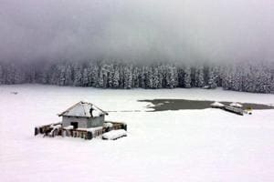 Snowfall in Himachal: State reels under biting cold