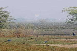 According to birders, the 700-acre area presently has more than 2,000 birds, including several migratory species.