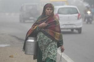 Cold conditions grip north India, man dies in Haryana