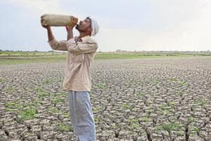 26,339 Maharashtra farmers committed suicide in last 17 years: Govt
