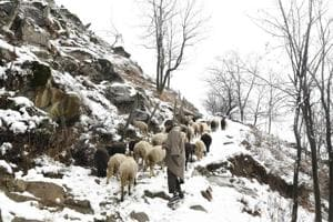J-K shivers as temperature dips to minus 11.2 in Kargil