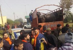 Hindu Yuva Vahini activists with a truck laden with cattle.