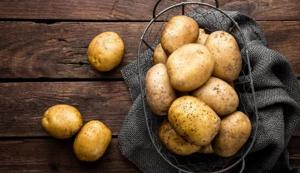 UP: Glut forces government to include potato in mid-day meal scheme