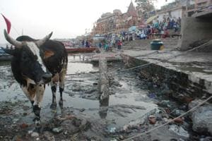 "On December 20, a Comptroller and Auditor General report said unused funds, the absence of a long-term plan and the lack of pollution abatement works are hampering the rejuvenation of the Ganga. The National Mission for Clean Ganga (NMCG), the nodal body for cleaning the Ganga, the report added, ""could not utilise any amount out of the Clean Ganga Fund"", which meant that the amount of Rs198.14 crore (as of March 31, 2017) was lying in banks."