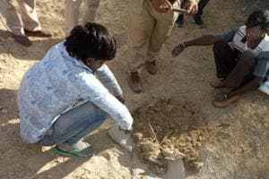 Two arrested for poaching Chinkara in Barmer