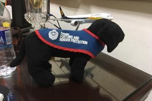 Woof! Dog squad to sniff out smugglers at Delhi airport soon