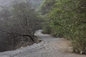The meeting will take place in the backdrop of a rise in poaching in the Aravallis.