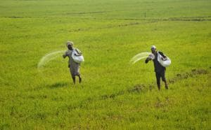 Rajasthan said the union ministry of agriculture and farmer welfare has agreed in-principle to the state's proposal to create a crop insurance company.