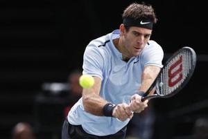 Juan Martin del Potro beat David Ferrer 6-4, 6-4 to enter the Auckland Classic final.