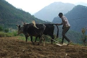 Agriculture to be focus area of annual budget, says Prakash Pant