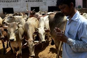 NHRC has taken cognizance in some cow vigilantism cases: Panel chief