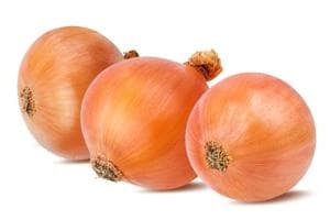Onion type may help in fighting drug-resistant tuberculosis