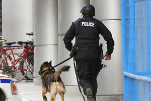 Man bites police dog in US, arrested