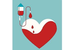 In one year, blood of 902 voluntary blood donors was found infected with HIV, Hepatitis B, Hepatitis C or syphilis.