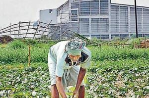 A farmer works in his field next to the closed Tata Motors factory in Singur. In November 2017, the Hooghly district magistrate issued a fresh notice, inviting farmers to work in the fields. Only 50 of the 630 applicants turned up till January 8.