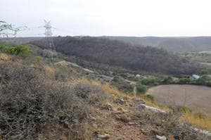 The tribunal is holding hearings on a petition claiming that deemed forest areas in the Aravallis are being encroached upon.