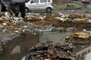 garbage dumped in Khalsa Mohalla in Patiala.