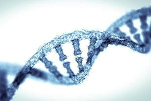 Scientists discover how gene mutation triggers immune disease