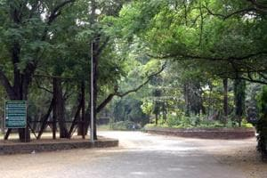 The Maharashtra State Wildlife Board on Wednesday approved major proposals pertaining to construction in the forest area of Sanjay Gandhi National Park.